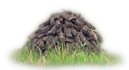 Rack of Peat Drying